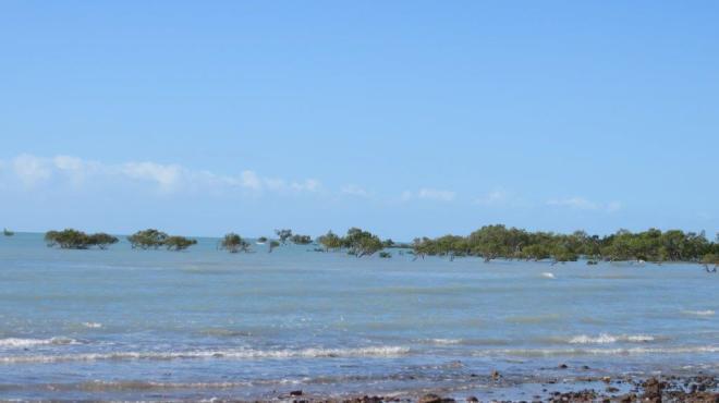 Clairview Caravan Park beach