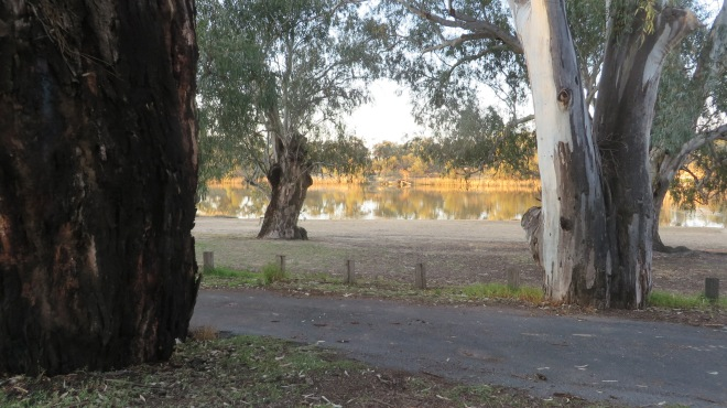 View from our caravan site - Apex RiverBeach Caravan Park