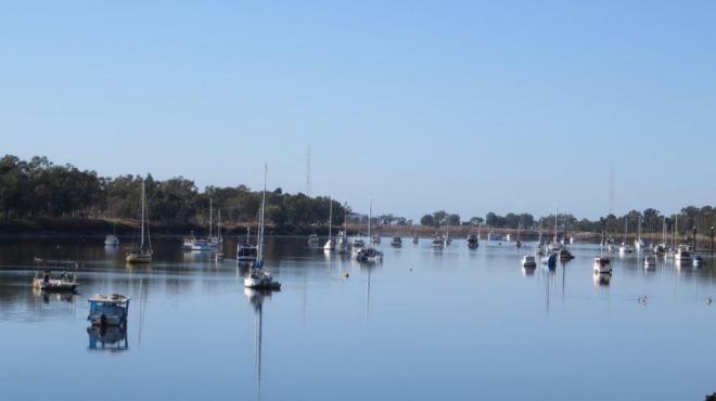 Fitzroy River, Rockhampton QLD