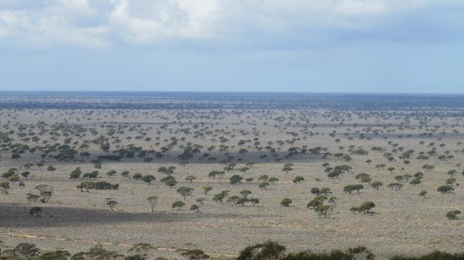 Eucla Pass, Western Australia September 2014