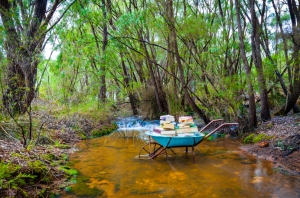 2015 Margaret River Readers and Writers Festival