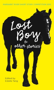Cover Lost Boy and Other Short Stories