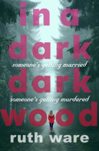 In A Dark Dark Wood cover