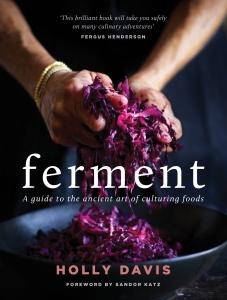 Ferment cover
